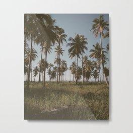 PANGLAO III Metal Print