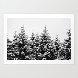 Winter Wanderlust Woods III - Snow Capped Forest Nature Photography Art Print