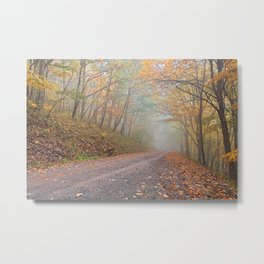 Misty Autumn Forest Road Metal Print