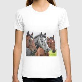 Wonderful Horses T-shirt