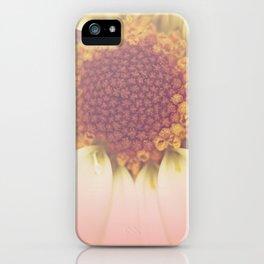 Bee's Perspective iPhone Case