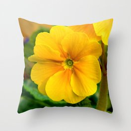 Yellow Heartsease Flower Throw Pillow