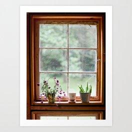 Out the Garden Window Art Print