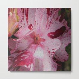 Rose Abstract Metal Print