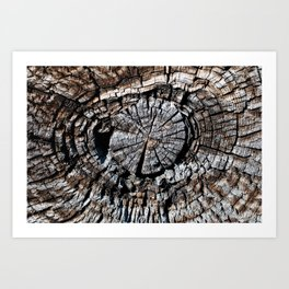 Exposed Wooden Beam Art Print