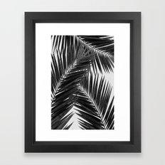 Palm Leaf Black & White III Framed Art Print