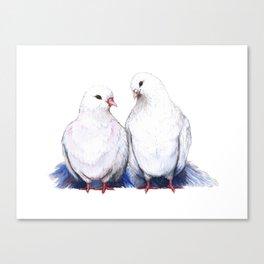 Turtle doves Canvas Print