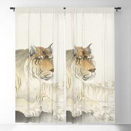 Tiger Illustration Blackout Curtain