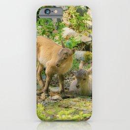 Baby capricorn iPhone Case