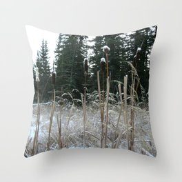 Falltime in Watervalley Throw Pillow