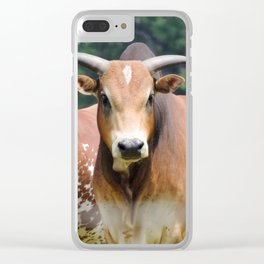 Mini Brahman Clear iPhone Case