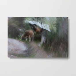 Along Parvati river Metal Print
