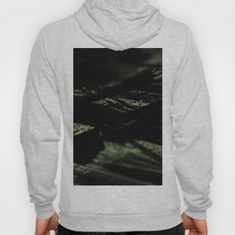 Abstract landscape field pattern intricate texture metallic structure macro background Hoody
