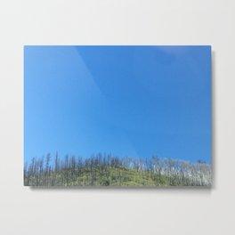 forest fire arizona Metal Print