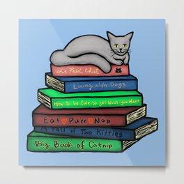 Cat Nap on Books Metal Print