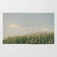 Campos de maíz Rug