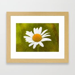Chamomile Art Framed Art Print