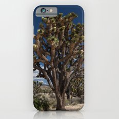 Joshua Trees in Mojave Desert iPhone 6s Slim Case