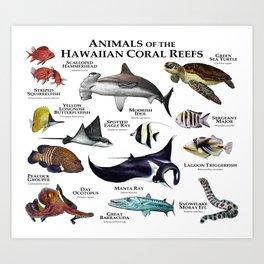 Animals of the Hawaiian Coral Reefs Art Print