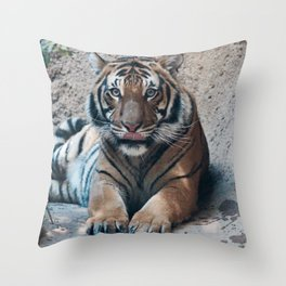 Embrace your Wild Side Throw Pillow
