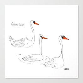 Queen's Swans Canvas Print