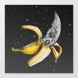 A Planetary Plantain Canvas Print