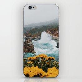 Big Sur - Micah Hamilton iPhone Skin