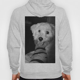 A Puppy's Smile Hoody