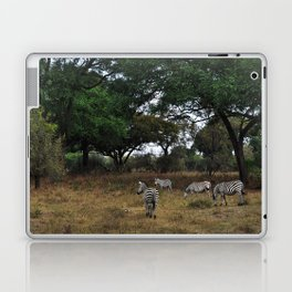 Zebras. Laptop & iPad Skin