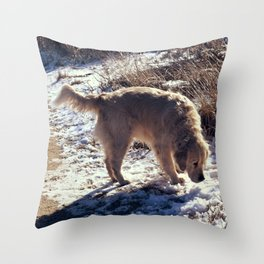Radley Throw Pillow