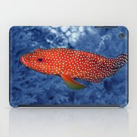 trout iPad Cases featuring Coral Trout by Serenity Photography