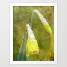 Textured Daffodils Art Print