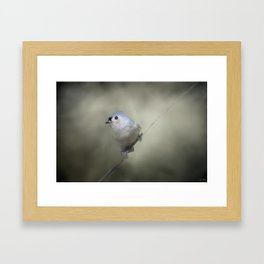 Little Tufted Titmouse Framed Art Print