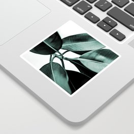 Minimal Rubber Plant Sticker
