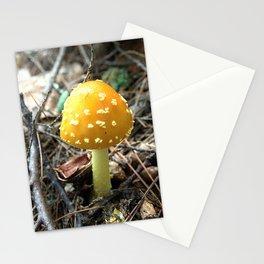 Mushroom K Stationery Cards
