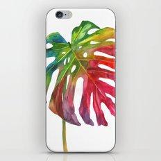 Leaf vol 2 iPhone & iPod Skin