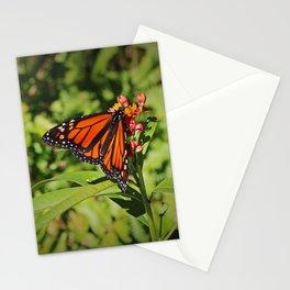 A Passionate Affair Stationery Cards