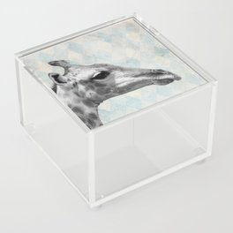 Retro Giraffe Acrylic Box
