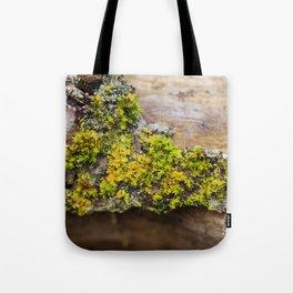 Moss on a Fallen Tree Tote Bag