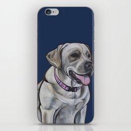Gracie the Labrador iPhone Skin