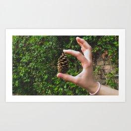 PHOTOGRAPHY  - Pinecone Art Print