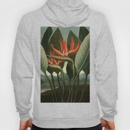 Birds of Paradise : Temple of Flora Hoody