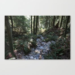 Quarry Rock Deep Cove trail 2 Canvas Print