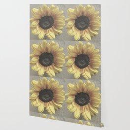 Soft Sunflower Wallpaper