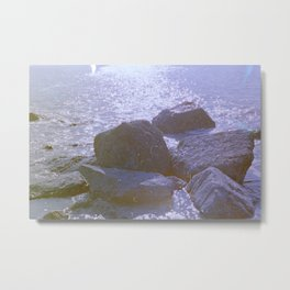 Nehalennia VI Metal Print