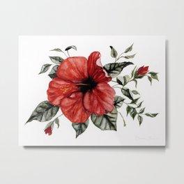 Blooming Red Hibiscus Metal Print