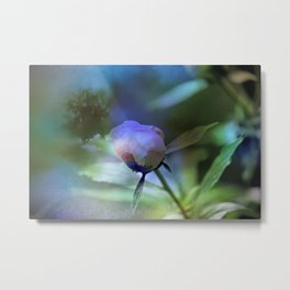 In Dreams I Walk With You Metal Print