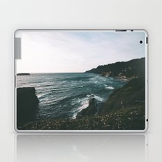 Oregon Coast IX Laptop & iPad Skin
