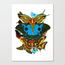 BUTTERFLIES - The Colors of the Nature Canvas Print