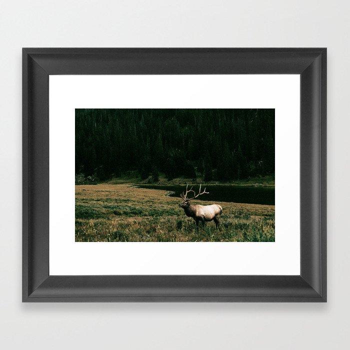 Oh Elk! Gerahmter Kunstdruck